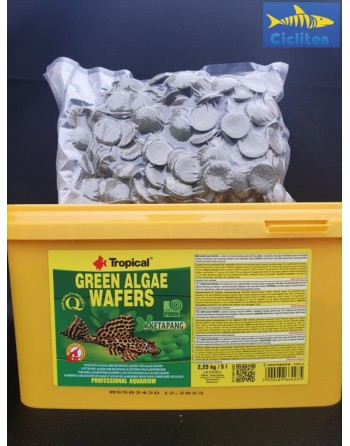 GREEN ALGAE WAFERS 250 ML - 50 GR