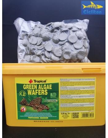GALLETAS SPIRULINA GREEN ALGAE WAFERS 500ml - 226gr