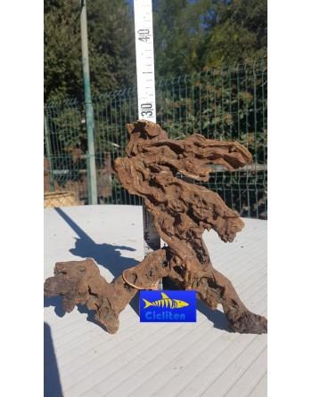 Tronco mopani o manglar 20 a 30 cm