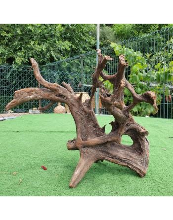 Tronco de manglar 50 a 70 cm
