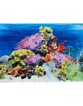 Background for aquarium MOD Caribe height 50cm 3,30€ meter