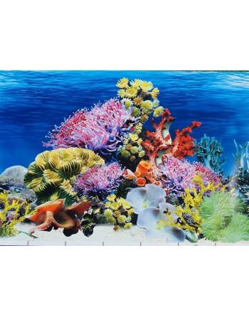 Fundo para aquário MOD Caribe altura 50cm 3,30€ metro