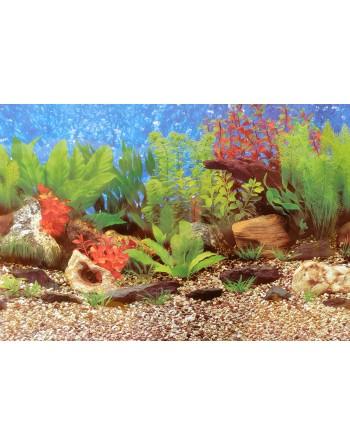 Fundo para aquário MOD Amazonas altura 50cm 3,30€ metro