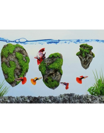 Floating Rock 9 x 6 x 5 cm