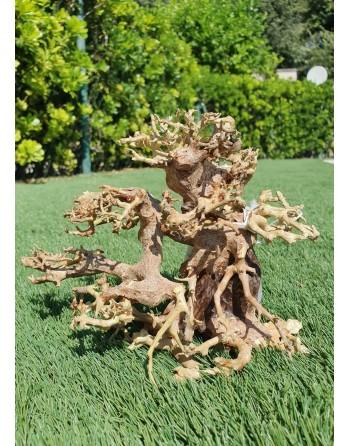 Natural bonsai wood, side goblet 23 x 12 x 15 cm