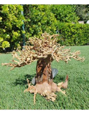 Natural bonsai wood central cup 23 x 12 x 15 cm