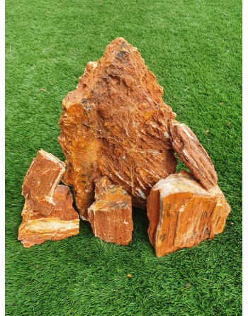 Wooden Fossil Rock 4 to 6 pieces 5kg