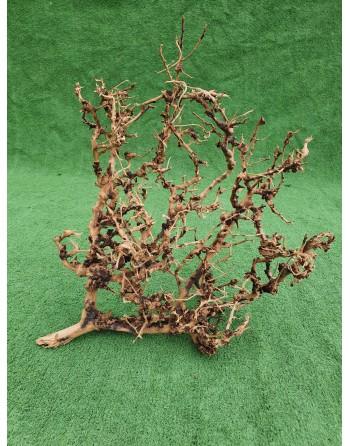 Aquarium branches thailand tree 40 to 60 cm